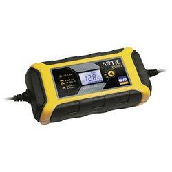 Chargeur de batterie ARTIC 8000